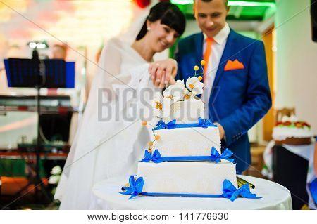 newlywed cut wedding cake at wedding day