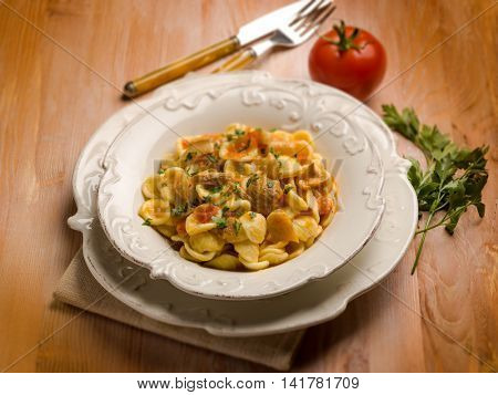 orecchiette with cep edible mushroom, selective focus