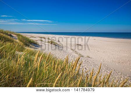 Moving dunes park near Baltic Sea in Leba Poland