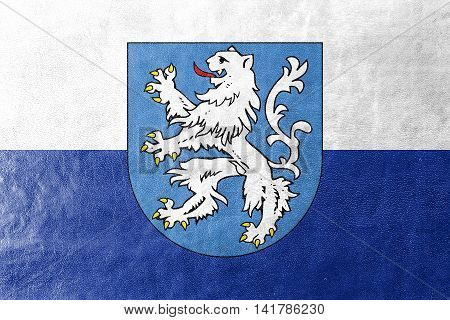 Flag Of Mlada Boleslav With Coat Of Arms, Czechia, Painted On Leather Texture