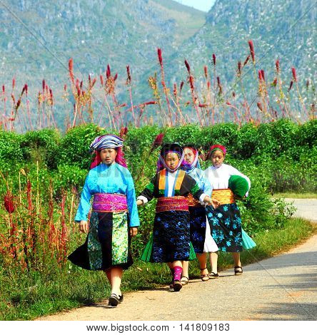 HA GIANG, VIETNAM, February 19, 2016 group of young women, ethnic Hmong, high mountains, Ha Giang, Vietnam, wearing traditional costumes. Come to the market in spring