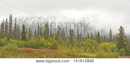 Fall Snow in the Mountains along the Alaska Highway in the Yukon