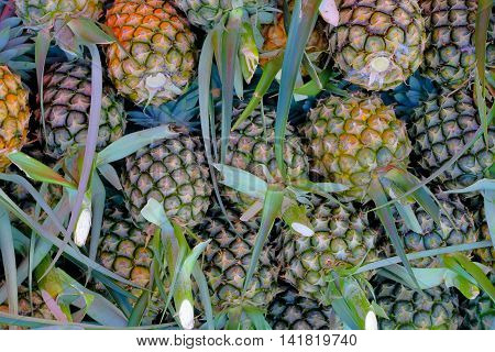 pineapple background. ready for sale in the market .