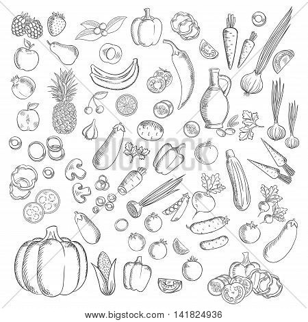 Fresh apples, strawberry, cherries, raspberries and pineapple, banana, peach and orange fruits with peppers, tomatoes, corn and onion, eggplants, mushrooms, pea and cucumbers, carrots, pumpkin, radishes potatoes olives and garlic vegetables sketch
