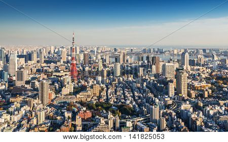 Skyline Of Tokyo Cityscape With Tokyo Tower At Sunset, Japan