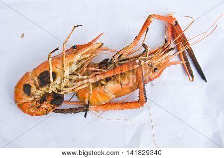 Thai food grilled river lobster, fresh lobster
