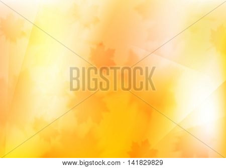 Blurred orange autumn background with maple leaves. Vector design illustration