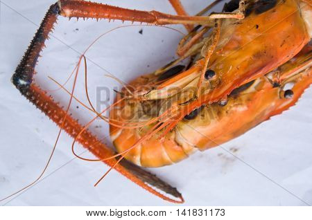 grill shrimp ready to eat on white