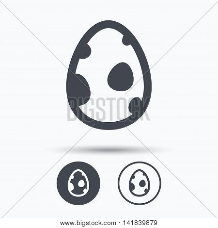 Dinosaur egg icon. Birth symbol. Pokemon egg concept. Circle buttons with flat web icon on white background. Vector