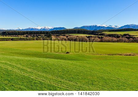 Green Fields And Mountains In South Island, New Zealand