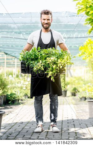 Portrait of a handsome gardener in black apron holding pots with plants in the greenhouse. Seller or worker in the plant shop