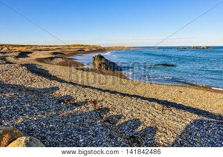 Beach On The South Coast Of New Zealand