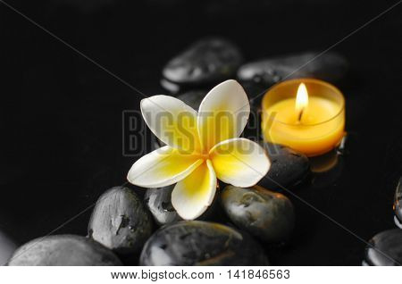 still life with black pebble and candle with frangipani