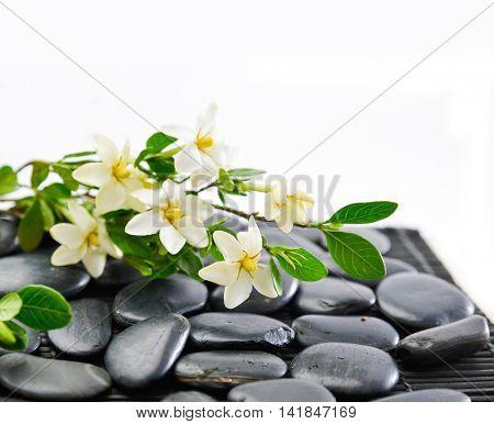 Lying down white Gardenia and stones on mat