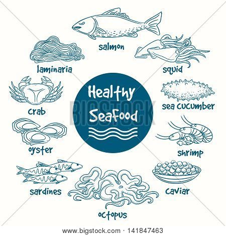 Healthy line doodle seafood. Vector hand drawn food of sea. Fish and seaweed, shrimp and shellfish