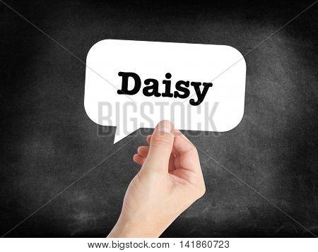 Daisy written in a speechbubble