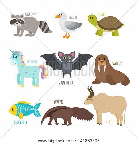 Abc. Cute Zoo Alphabet In Vector. Funny Cartoon Animals. Raccoon, Seagull, Turtle, Unicorn, Vampire
