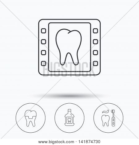 Dental crown, x-ray and brushing teeth icons. Mouthwash linear sign. Linear icons in circle buttons. Flat web symbols. Vector