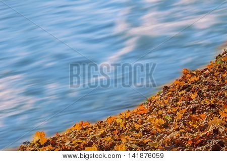 Soft Flowing Water And Colorful Autumn Leaves