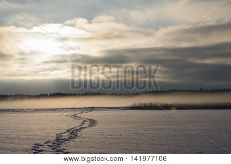 Foot Track Over The Snowy Fields, Foggy Morning