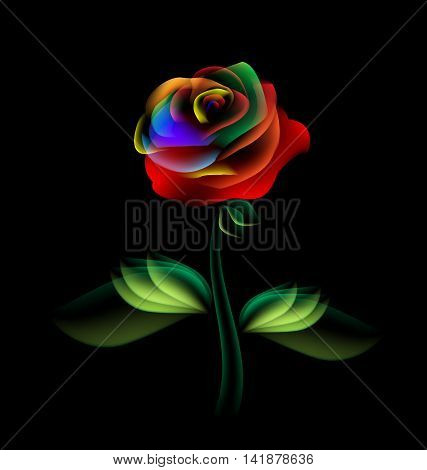black background and multi-colored fantasy translucent flower