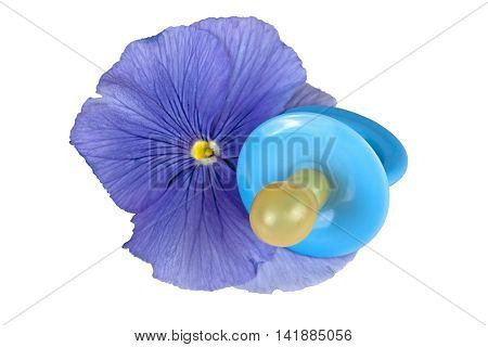 Single Blue Baby Pacifier With Blue Pansy Flower