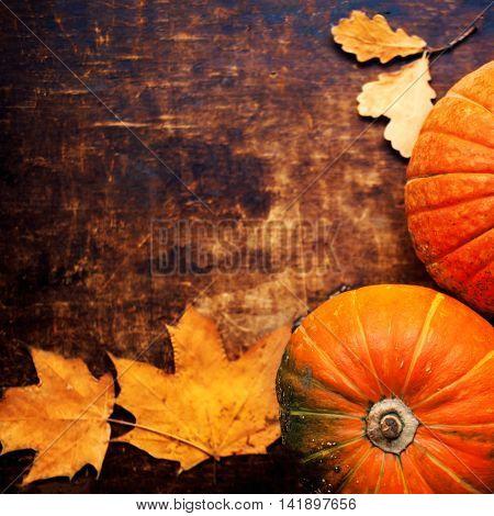 Autumn pumpkin on dark wooden background. Assortment of pumpkins with yellow autumn leaves