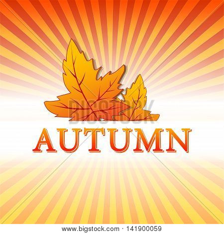 abstract illustration with text autumn and drawn fall leaves over yellow orange red gradient rays vector