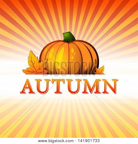 abstract illustration with text autumn drawn pumpkin and fall leaves over yellow orange red gradient rays vector