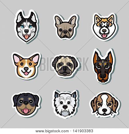 vector stickers dogs. Doberman, rottweiler, corgi, husky