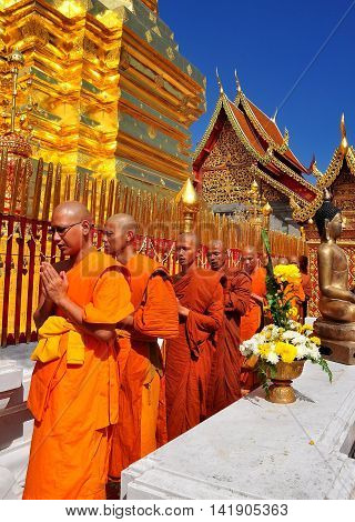 Chiang Mai. Thailand: - December 26 2012: Monks their hands clasped in prayer walking in procession around the great golden Chedi at Wat Doi Suthep *