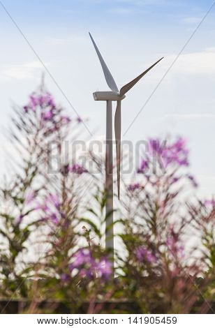 Wind Turbines Clean Energy Creation, Large Windmills Designed To Reduce Global Warming
