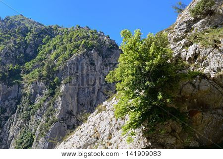 image of view of the rocks, mountain landscape