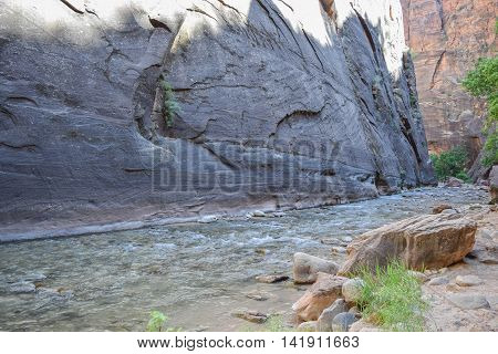A Rushing River against a Grey Canyon Wall, along The Narrows hiking trail, Zion National Park