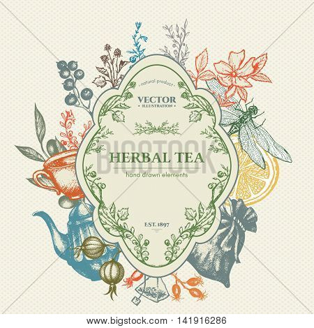 Herbal tea herbs and flowers botanical decorative vintage background hand drawn ink vector