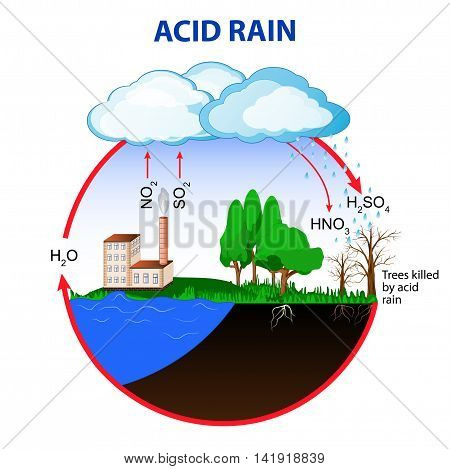 Acid rain is caused by emissions of sulfur dioxide and nitrogen oxide which react with the water molecules in the atmosphere to produce acids.