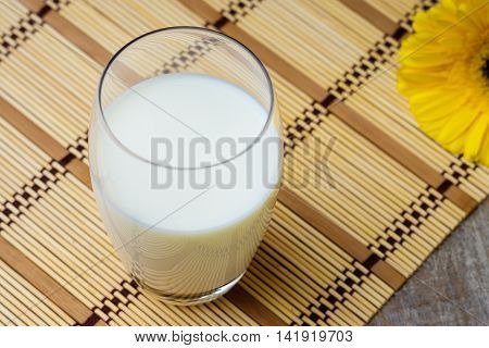 Glass of fresh milk and gerber flower