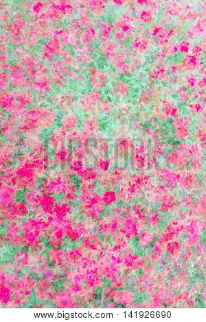 Abstract double exposure image with blurred impatiens flowers natural background.