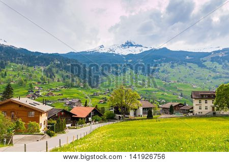 Grindelwald valley with village scattered on the green slopes of Bernese Alps at evening golden hour. Grindelwald village in Switzerland is a popular gateway for skiing in winter and hiking in summer.