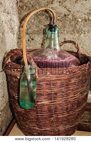 Wine fermentation process in demijohn  . .