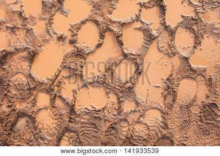 Wet Mud With Footprints
