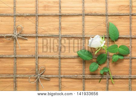 Square lined rope pattern on a wooden background and white rose with leaves interwoven between it. Texture for nature themes