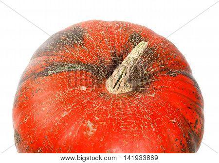 Part Of Ripe Pumpkin On White