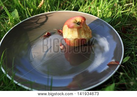 Plate With Bitten Apple