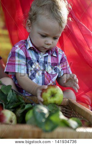 Toddler Holding Apple