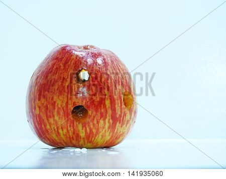 Red fresh apple with holes on white background.