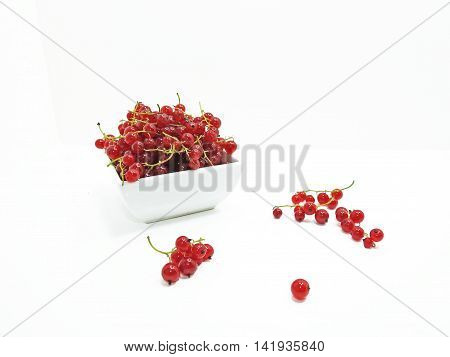 Red fresh currant in plate isolated on white background
