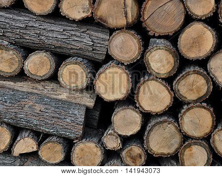 Closeup view of a pile of cut wood