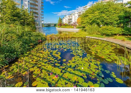 New apartment building in suburban area with gorgeous waterscape against blue sky.