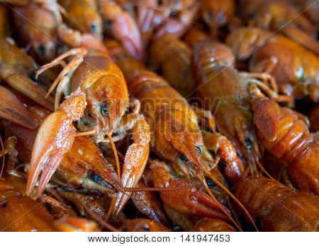 Many boiled crayfish lie on a platter